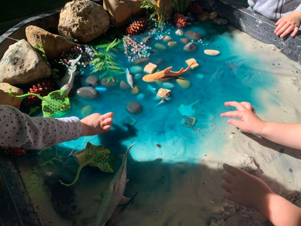 Early Childhood Education and Care Creative Learning Space faux Ocean
