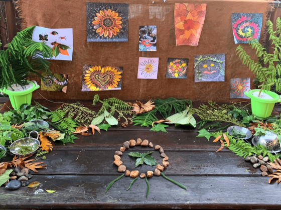 Childcare Diploma Student Sienna Shares 3 Simple Nature-Based Activities - This Activity Involves Loose Nature Items - This Picture is of Loose Nature Items